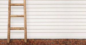 3-ladder